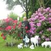 Эдвард Петерсон, 67, г.Эссен