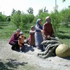 Елена, 47, г.Черногорск