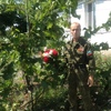 анатолий, 61, г.Алчевск