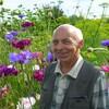 Дмитрий, 71, г.Кинешма